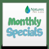 Monthly Specials & Discounts