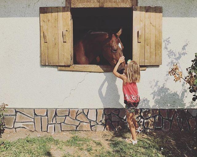 Любов #latergram #summerstories #Bulgaria #Burgas+…..#travelgram #travelphotography #picoftheday #traveldiary #instatravel #travelpics #seaside #summerstories #nomadstories #instaarchive #horses #kidsmodel #barn #animallovers #horsesofinstagram #kidsofinstagram #cutenessoverload