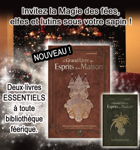 offrir un livre sur les fées, elfes et lutins comme cadeau pour Noël