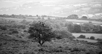 Dartmoor… Paysages et nuits de légendes