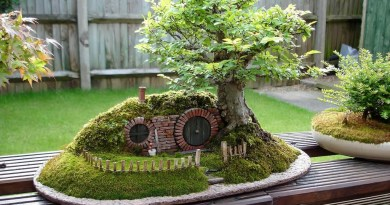 Les «Fairy gardens», la nouvelle mode dans les jardins venue des Etats-Unis