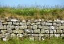 Mur d'Hadrien – Sur les traces de l'Arbre de Robin