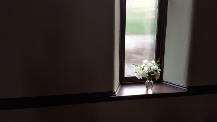 050116-window