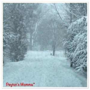 Winter Day by Peyton's Momma