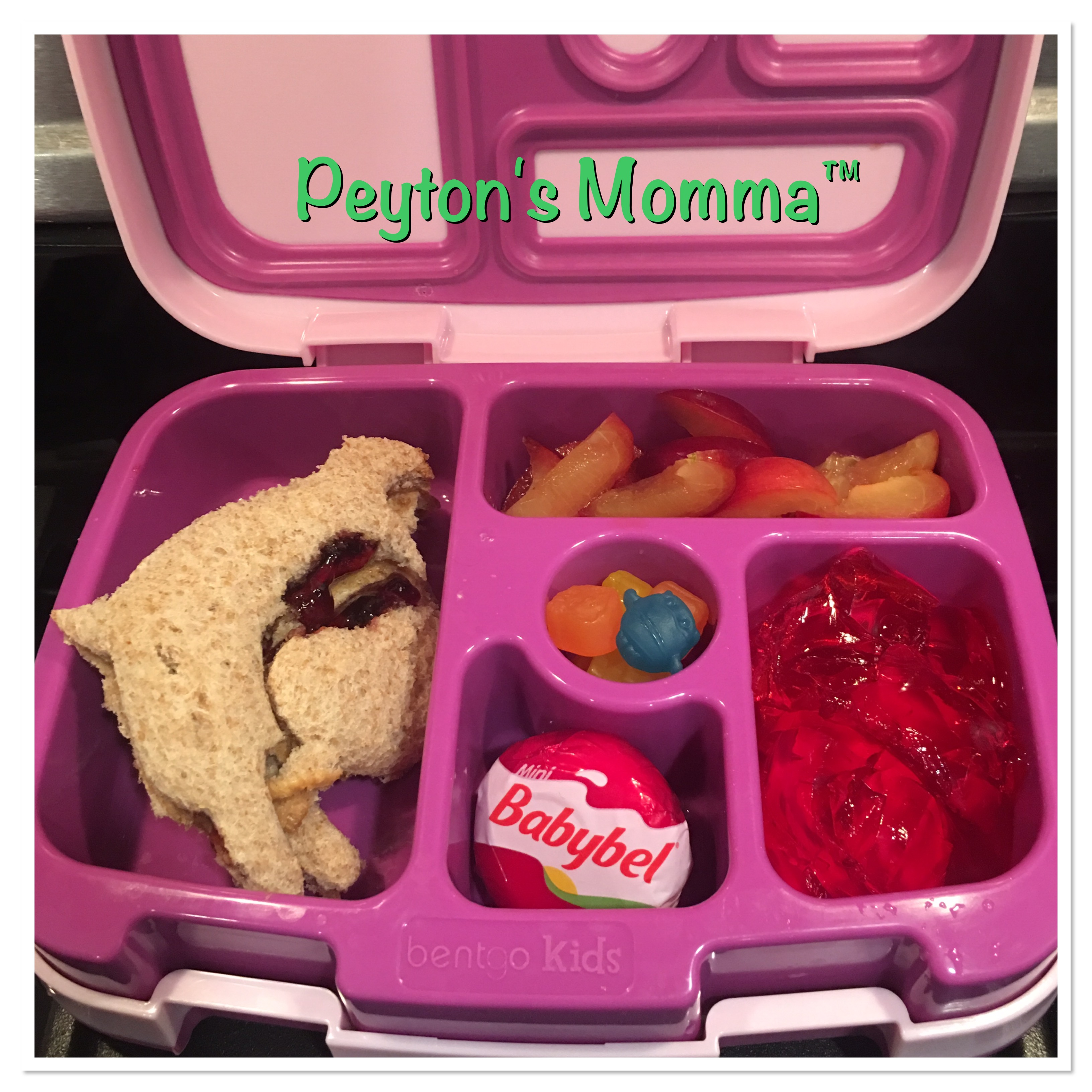 PBJ Dolphin Sandwich Bentgo Box