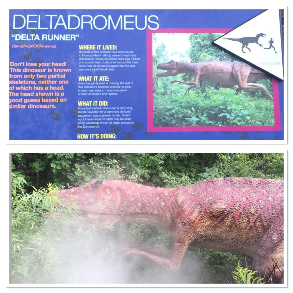 Deltadromeus Dinosaur