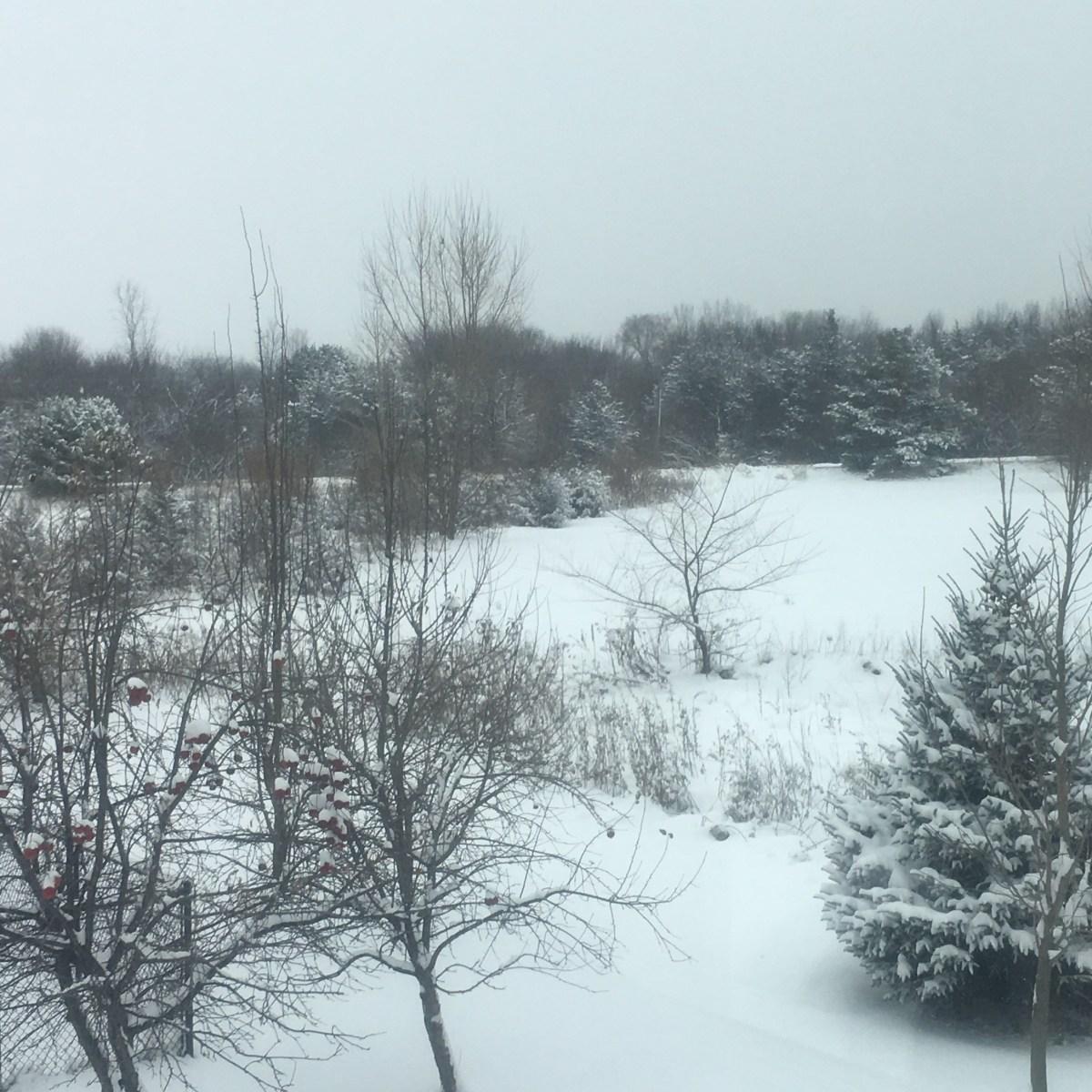 First Winter Snowfall