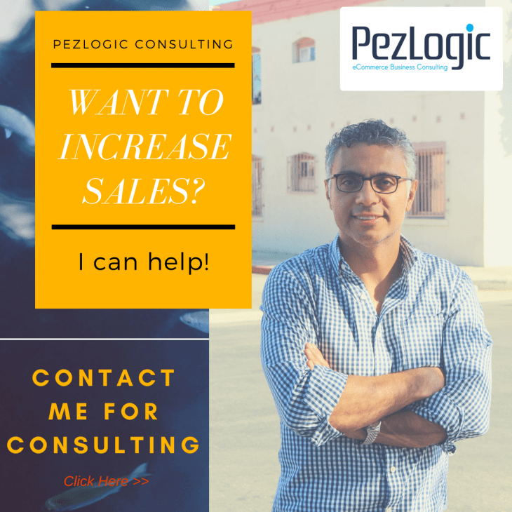 Pezlogic eCommerce Business Consulting