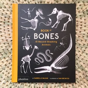 Book of Bones: 10 Record Breaking Animals Gabrielle Balkan and illustrated by Sam Brewster