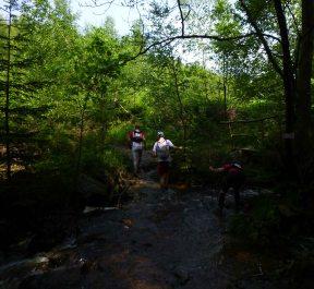 Ohm.Trail.2016.059