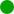 GrünerPunkt