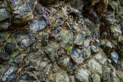 Pechstein © LL www.kingscreek.de