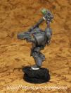 Suncaller Wolfspriester / Wolf Priest (5/6)