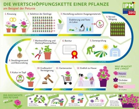 Die Wertschöpfungskette einer Pflanze (Quelle: IPM Essen)