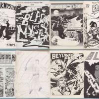 Steve Ogden Fanzine Collection on eBay