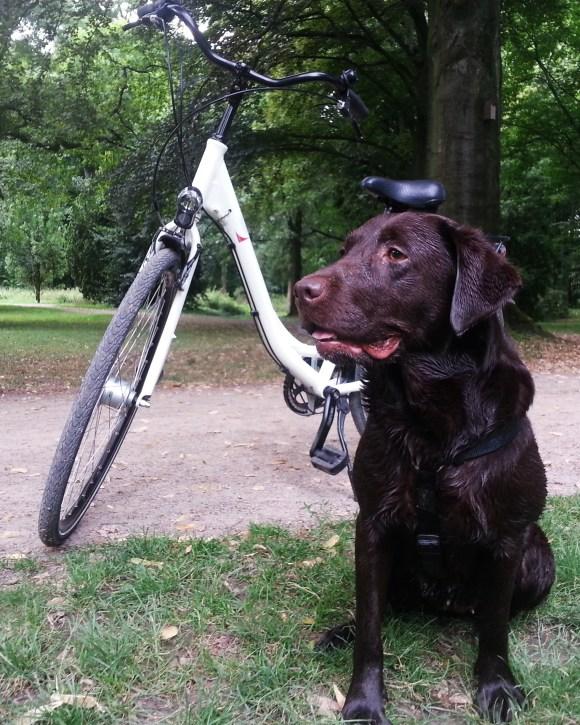 Glücklich und zufrieden nach Fahrradtour und Baden :-)