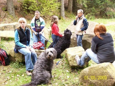 Christel, Heidi, Andreas, Dana und Feli mit Olga und Romeo beim wandern im Schwarzwald