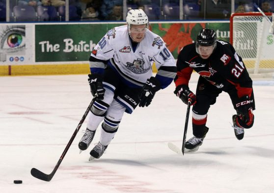 Prince George Cougars photo