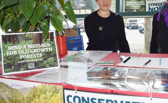 Conservation North was set up at Earth Day activities at the Exploration Place Monday urging people to sign a petition calling on government to protect old growth forests. The petition can be signed online or downloaded at www.ConservationNorth.org/take-action. Bill Phillips photo