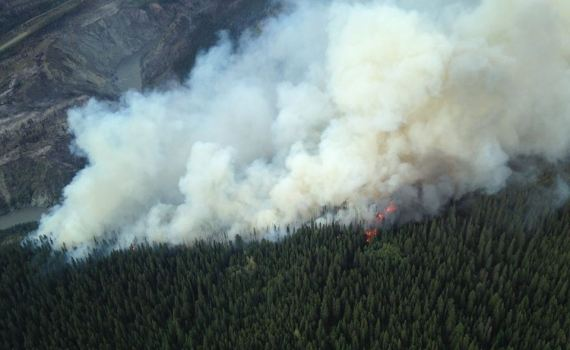 The southern edge of the Alkali fire south of Telegraph Creek. B.C. Wildfire Service photo