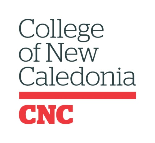 CNC strategic plan moves into next phase of development