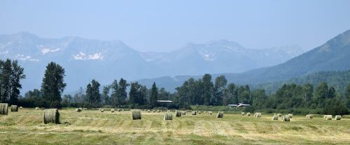 Support for feed on the way to Cariboo-Chilcotin ranchers