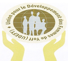 logo-udfi