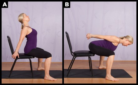 top chair yoga poses for seniors  spry living