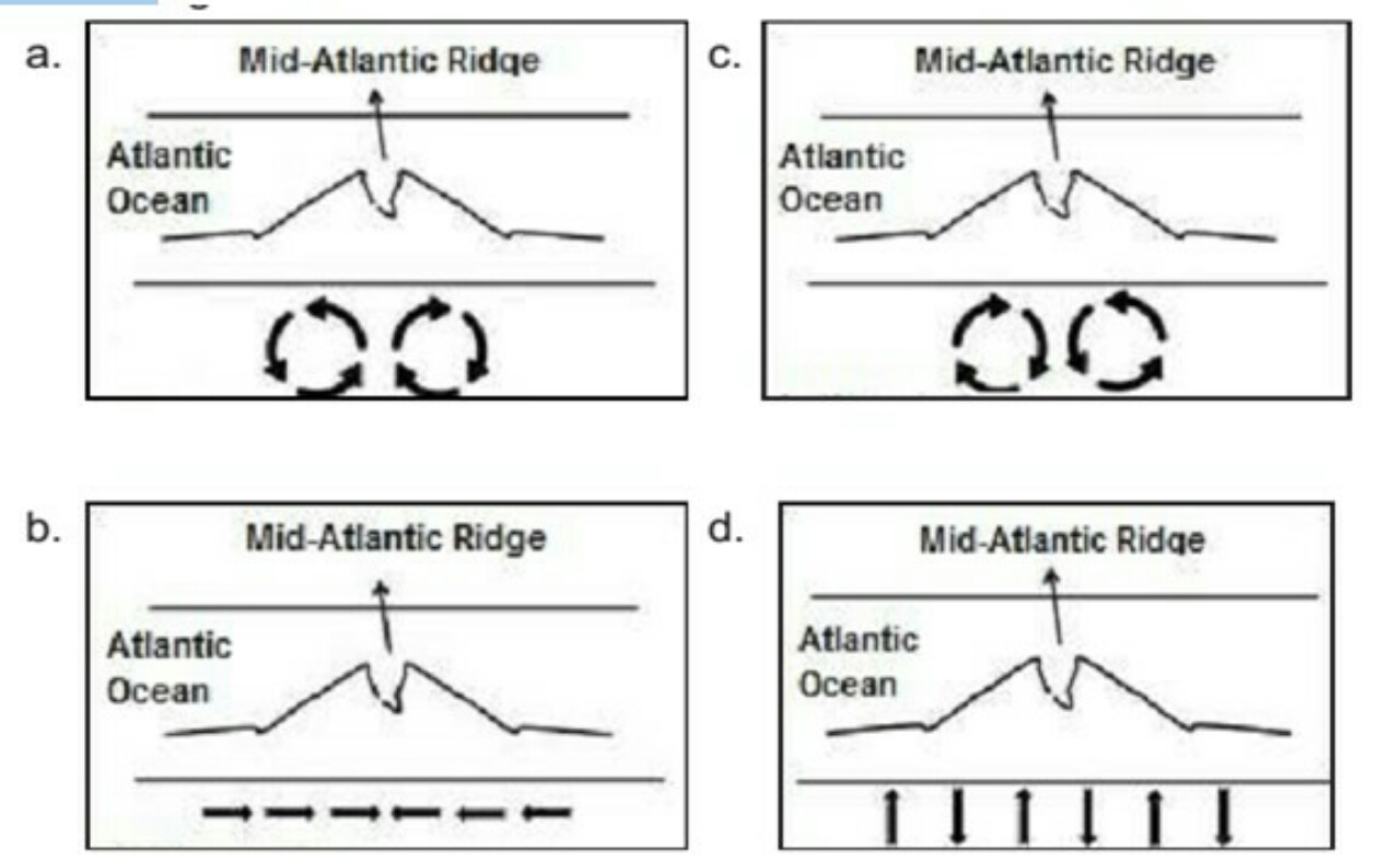Which Of The Following Diagrams Best Illustrates The