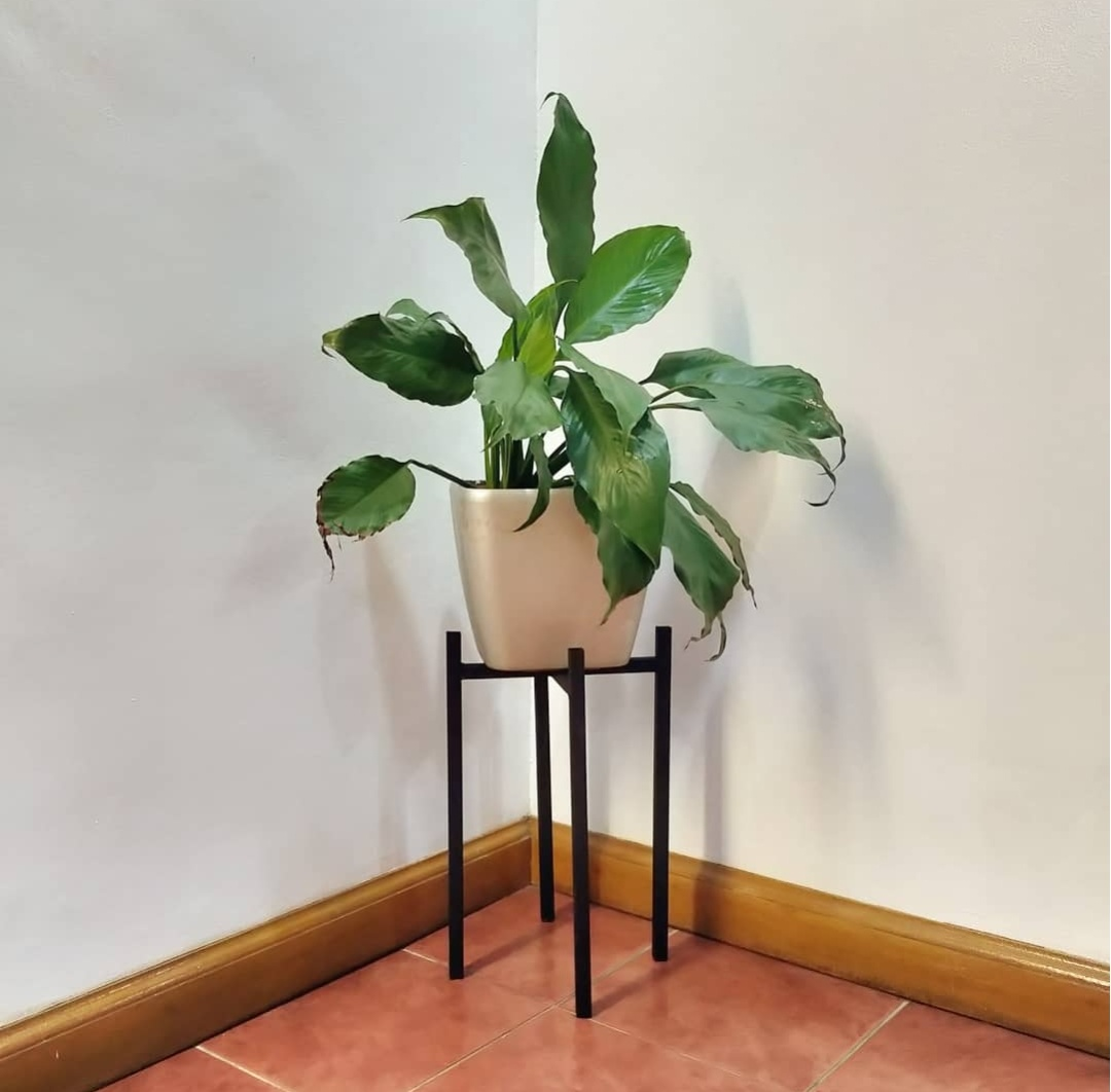 Metal Plant Stand Mid Century Modern Minimalist Plant Stand For Planters And Pots Lazada Ph