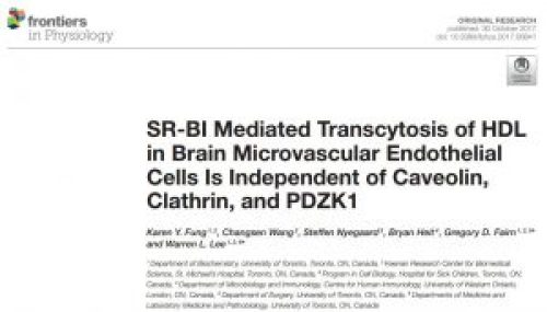 Paper on SR-BI and HDL Transport into the Brain