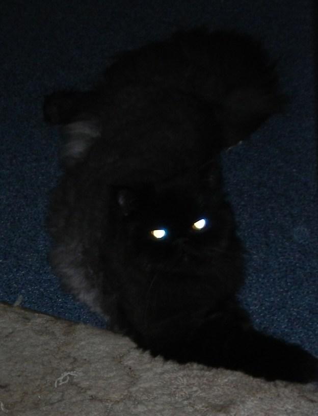 andy in dark