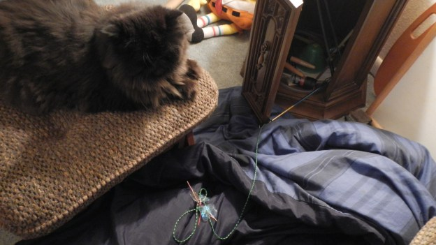 A suspicious moment: I think I caught someone red-pawed helping himsefl to the wand toy stash!