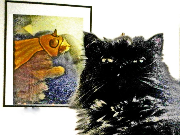 Andy rules this roost and don't you forget it!  (Meow! That means you especially, Dougy!)