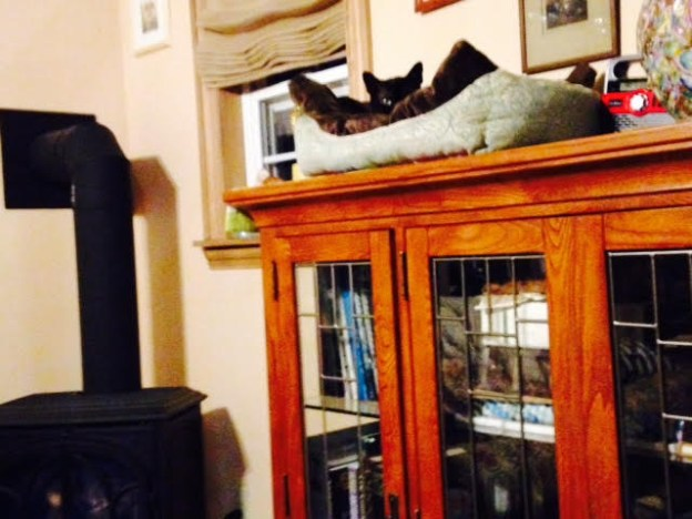 """You might guess André would """"rest"""" up there!"""