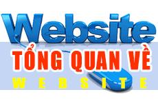 Cái nhìn tổng quan chi tiết về website