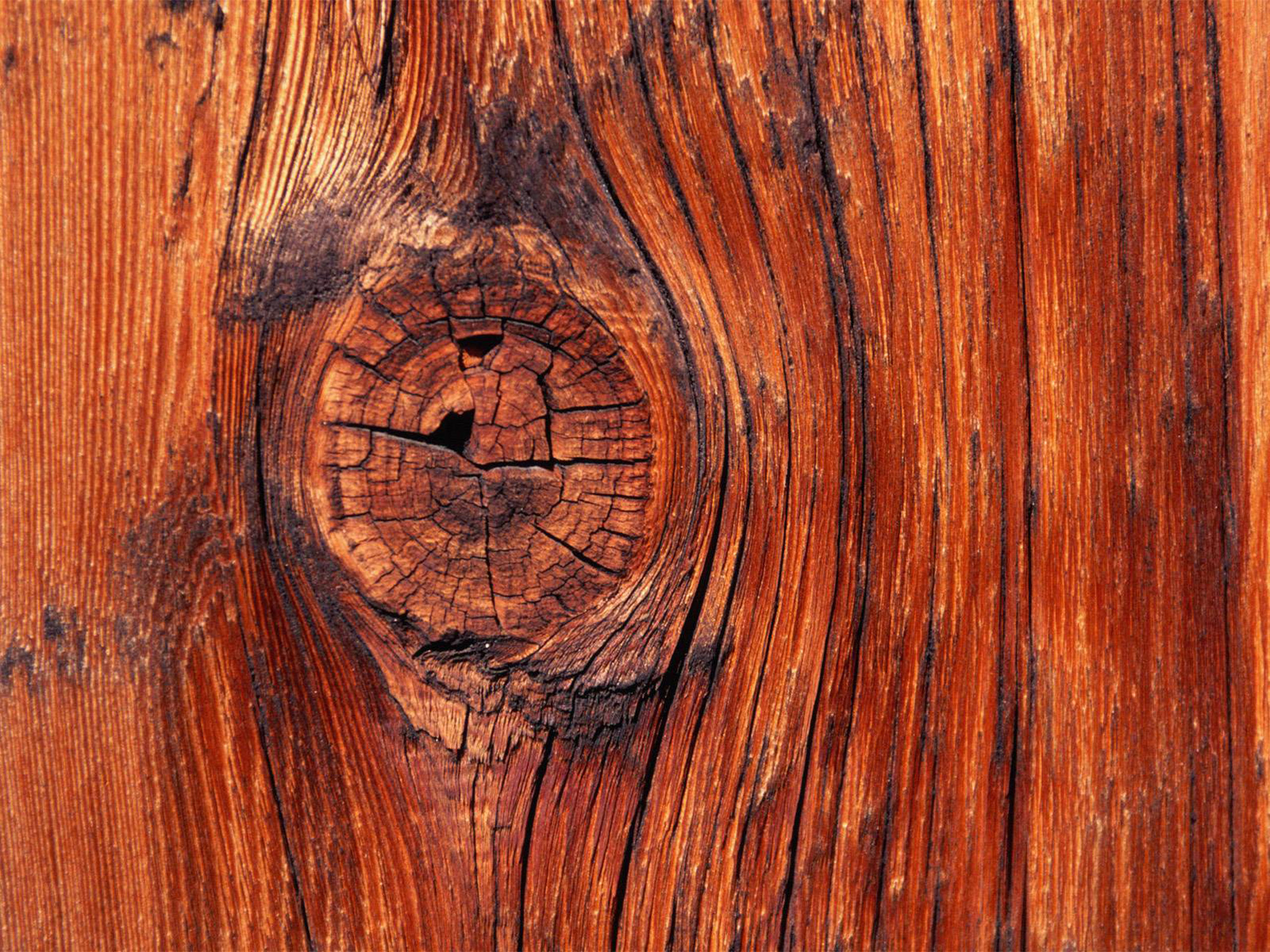 Android Wallpaper  Knock on Wood wood wallpaper  5