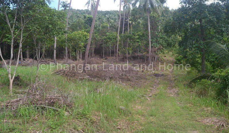 Peaceful 4.15 rai plot of Koh Phangan land for sale