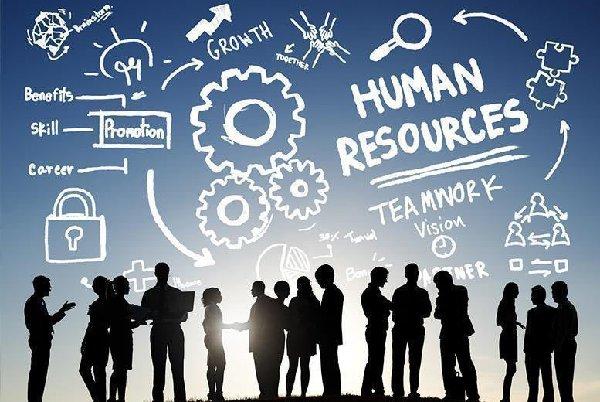 Tiêu chí lựa chọn phần mềm quản lý nhân sự