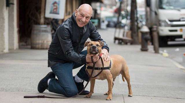 Patrick Stewart With Dog