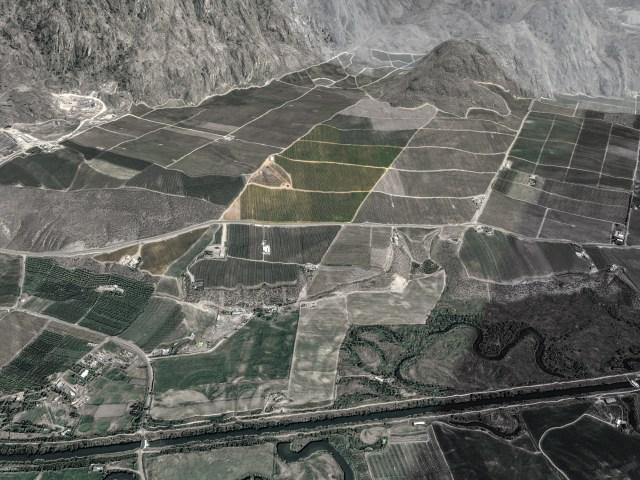 Phantom Creek and Sundial Vineyards