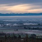 Volcanic Wines in British Columbia and Abroad