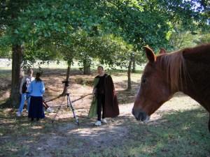 A horse investigates our set