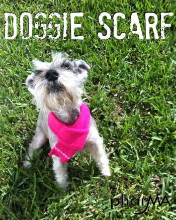 DIY Doggie Scarf