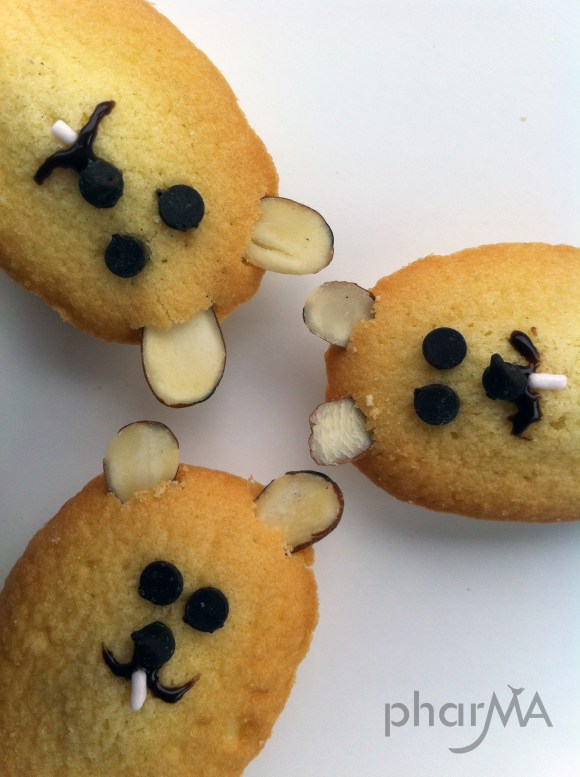 Groundhog Cookies