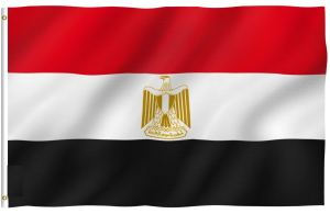 Egyptians Abroad – Queen City