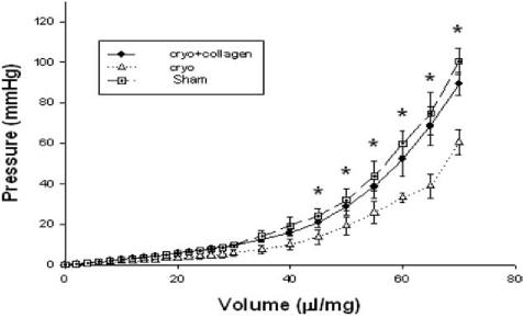 Figure 1. Pressure–volume curves for the four groups