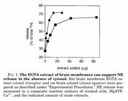 Fig. 1 EGTA extract can support NE release_page_003_edited-2
