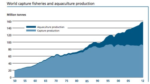 Food and Agriculture Organization of the United Nations -State of World Fisheries and Aquaculture  2014