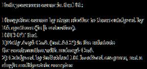 Elongation and Desaturation of Fatty Acids